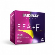 EFA + E Way - Midway Labs